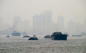Powietrze w mieście mają oczyścić zielone przystanki